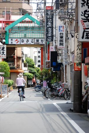 Back Alleys of Tokyo